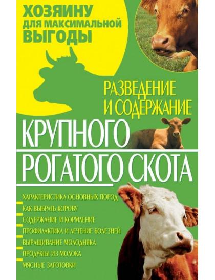 Разведение и содержание крупного рогатого скота