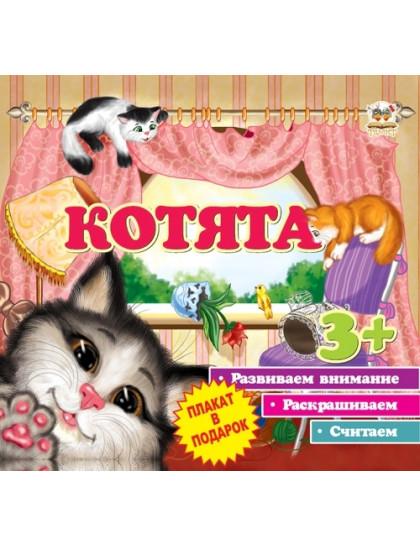 Первые шаги: Котята