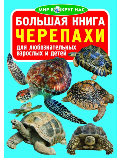 Большая книга. Черепахи